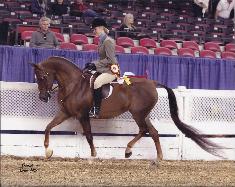 Whittnee   Reserve Champ Hunter ATR