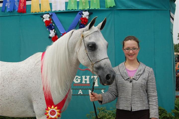 Xanadus Whimsical Reserve Champ Mare JTH